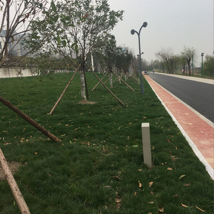 2016年武昌江灘月亮灣臨江步道改造工程